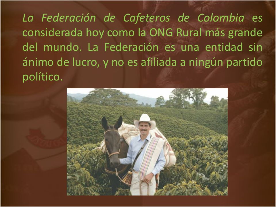 La Federación de Cafeteros de Colombia es considerada hoy como la ONG Rural más grande del mundo.