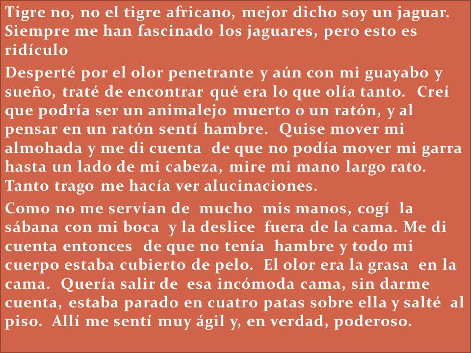 Tigre no, no el tigre africano, mejor dicho soy un jaguar