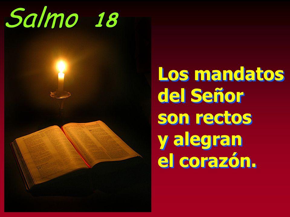 Salmo 18 Los mandatos del Señor son rectos y alegran el corazón.