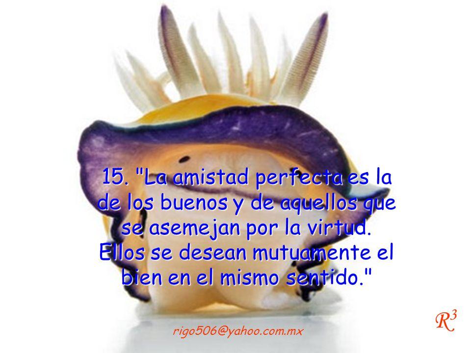 15. La amistad perfecta es la de los buenos y de aquellos que se asemejan por la virtud. Ellos se desean mutuamente el bien en el mismo sentido.