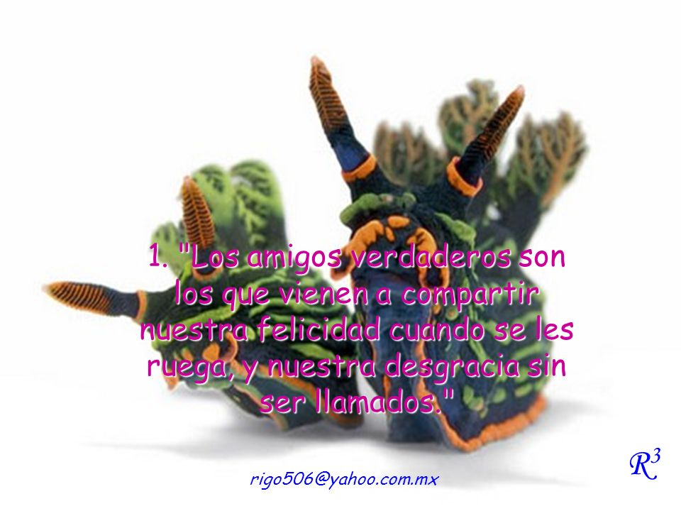 1. Los amigos verdaderos son los que vienen a compartir nuestra felicidad cuando se les ruega, y nuestra desgracia sin ser llamados.