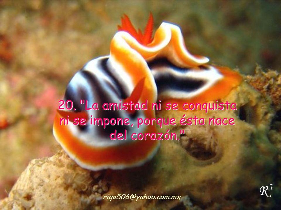 20. La amistad ni se conquista ni se impone, porque ésta nace del corazón.