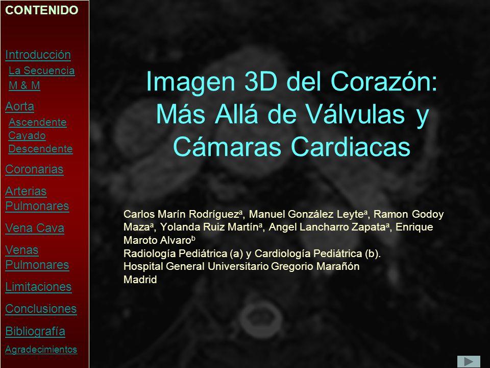 Imagen 3D del Corazón: Más Allá de Válvulas y Cámaras Cardiacas