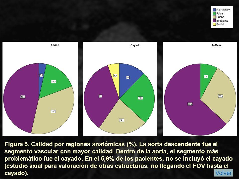 Figura 5. Calidad por regiones anatómicas (%)