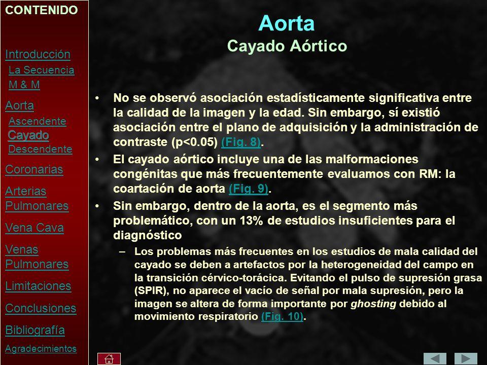 Aorta Cayado Aórtico CONTENIDO Introducción La Secuencia M & M Aorta