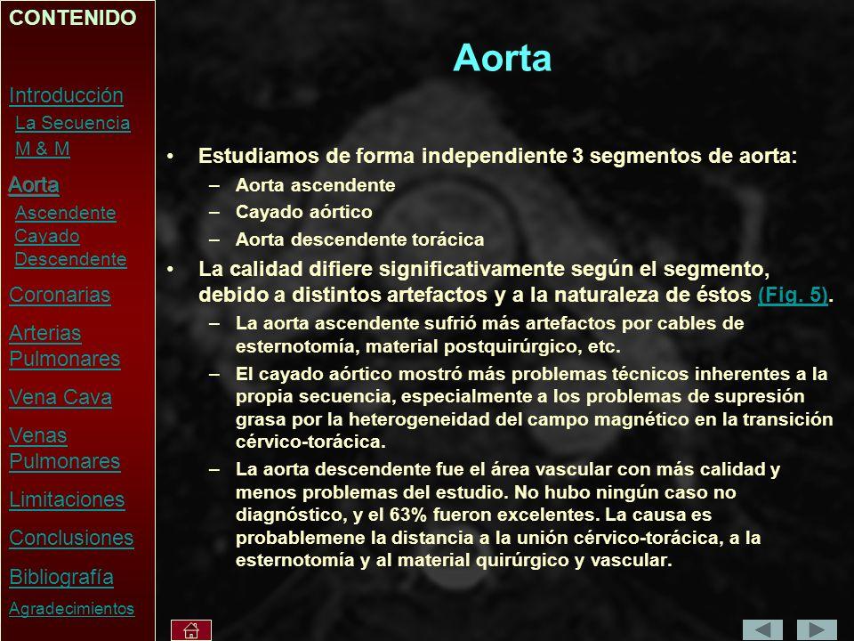 Aorta CONTENIDO Introducción La Secuencia M & M Aorta Ascendente