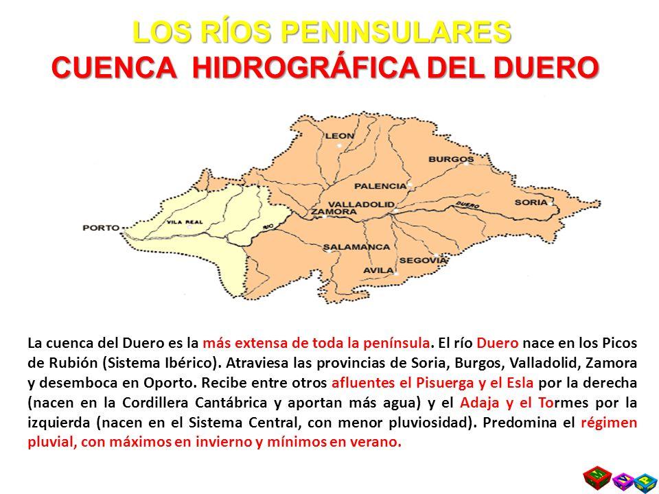 LOS RÍOS PENINSULARES CUENCA HIDROGRÁFICA DEL DUERO
