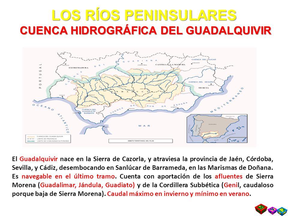 LOS RÍOS PENINSULARES CUENCA HIDROGRÁFICA DEL GUADALQUIVIR