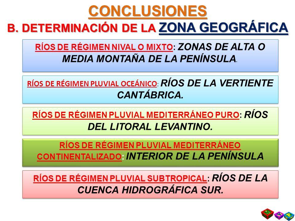 CONCLUSIONES B. DETERMINACIÓN DE LA ZONA GEOGRÁFICA