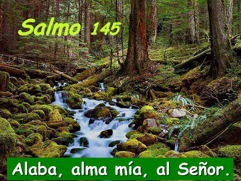 Salmo 145 Alaba, alma mía, al Señor.