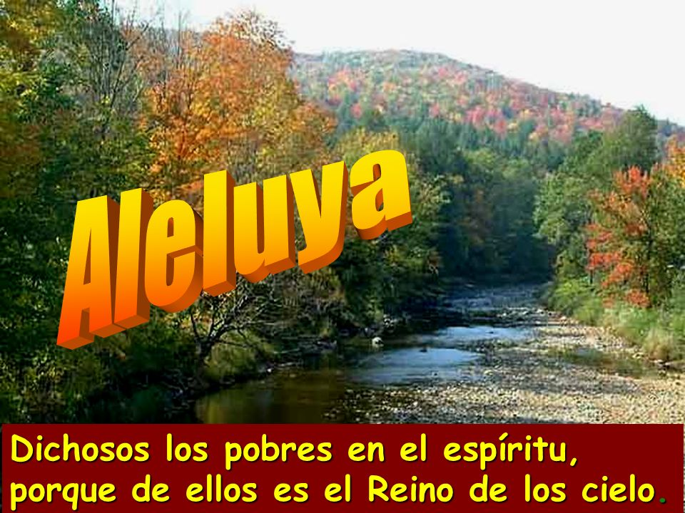 Aleluya Dichosos los pobres en el espíritu, porque de ellos es el Reino de los cielo.