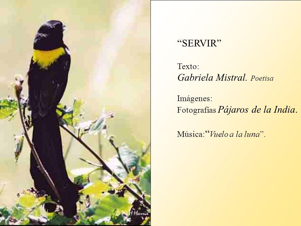 Gabriela Mistral. Poetisa