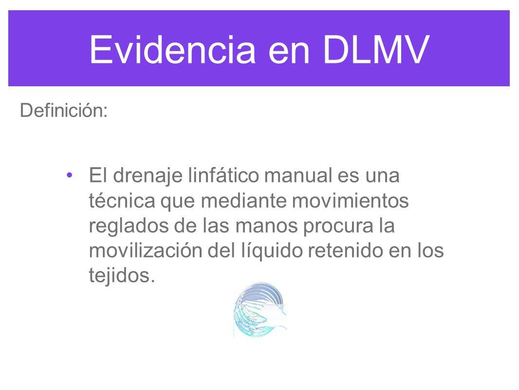 Evidencia en DLMV