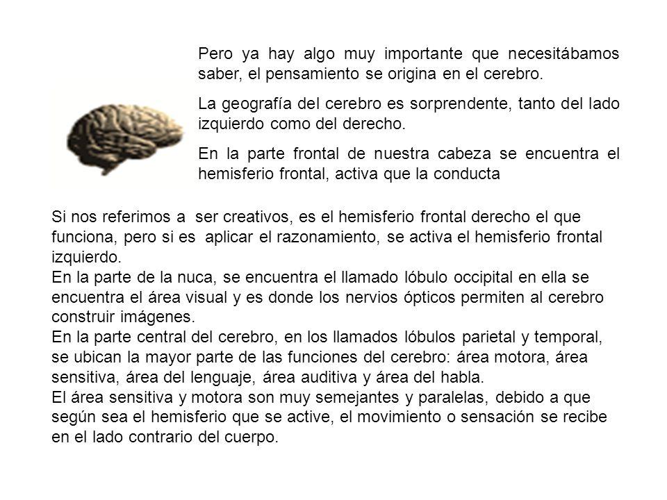 Pero ya hay algo muy importante que necesitábamos saber, el pensamiento se origina en el cerebro.
