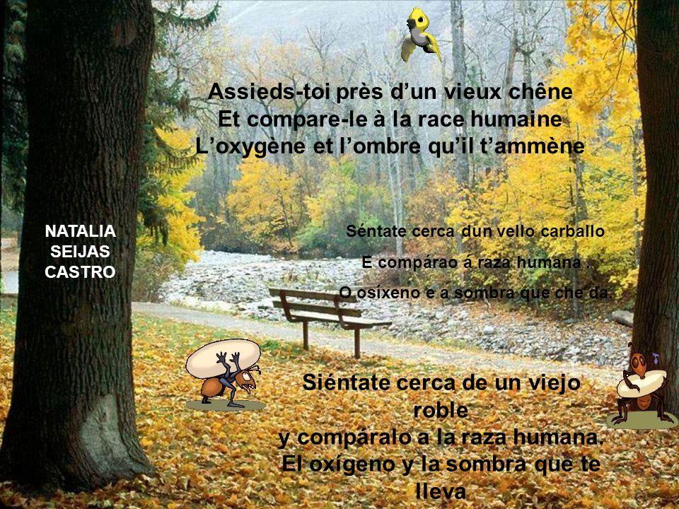 Assieds-toi près d'un vieux chêne Et compare-le à la race humaine L'oxygène et l'ombre qu'il t'ammène