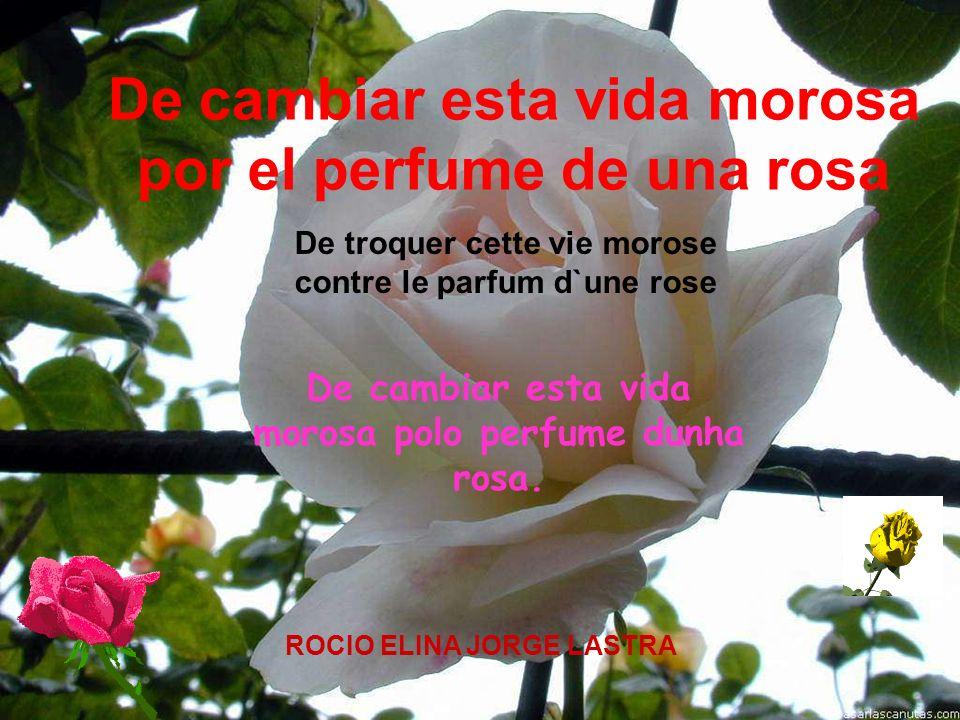 De troquer cette vie morose contre le parfum d`une rose
