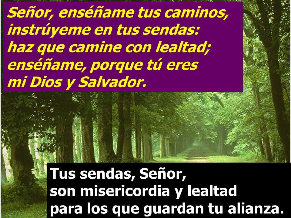 Señor, enséñame tus caminos, instrúyeme en tus sendas: haz que camine con lealtad; enséñame, porque tú eres mi Dios y Salvador.
