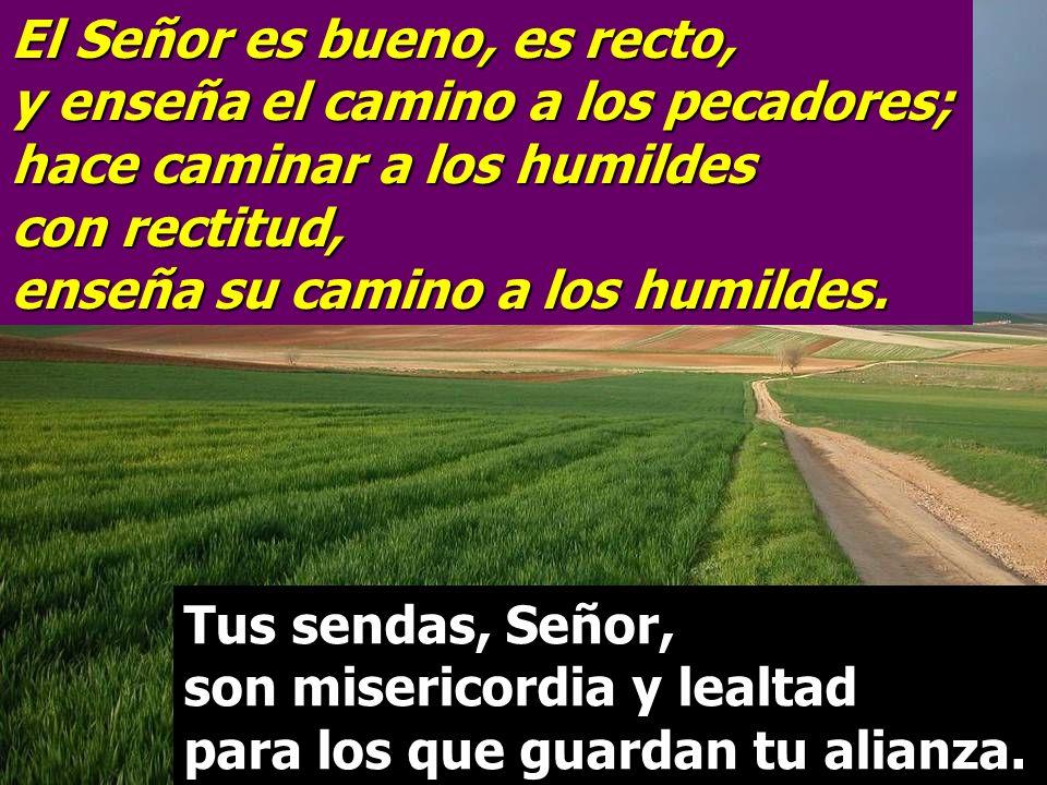 El Señor es bueno, es recto, y enseña el camino a los pecadores; hace caminar a los humildes con rectitud, enseña su camino a los humildes.