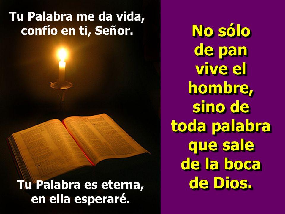 Tu Palabra me da vida, confío en ti, Señor.