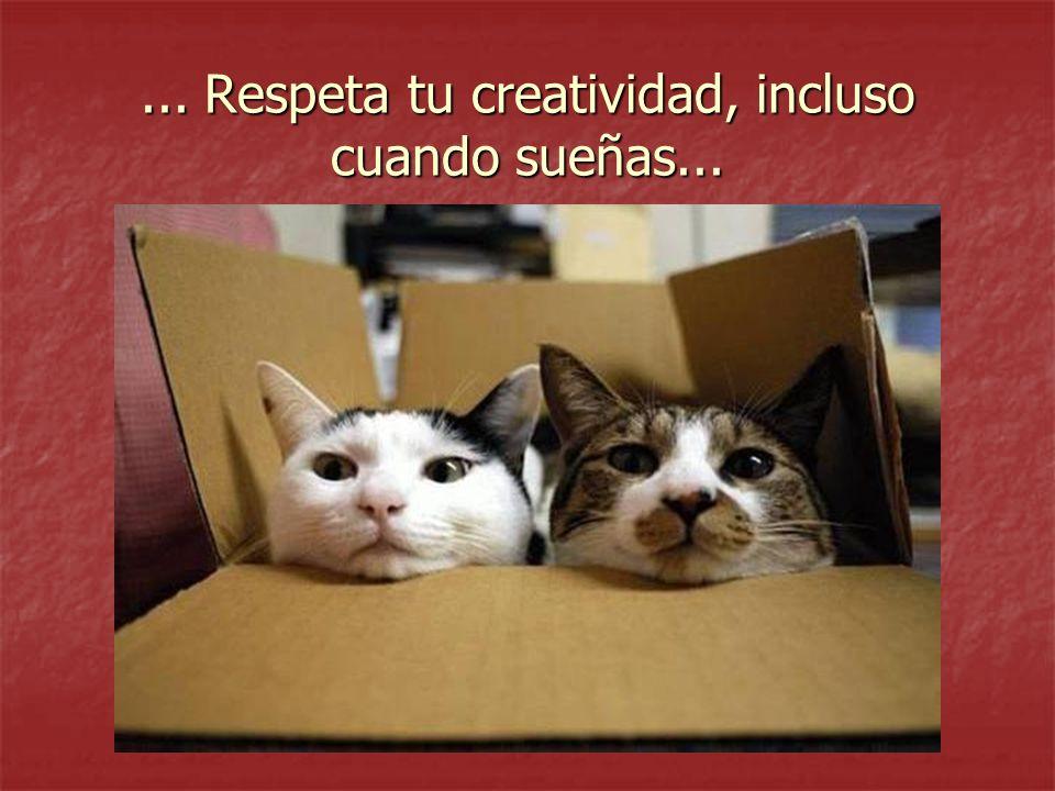 ... Respeta tu creatividad, incluso cuando sueñas...