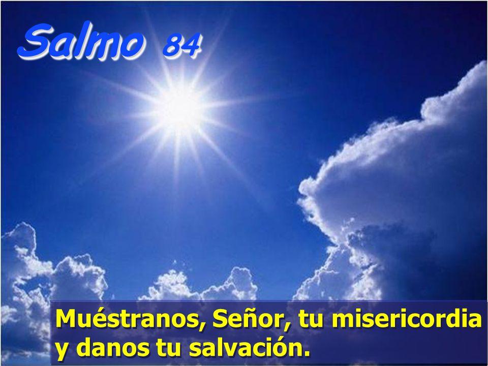Salmo 84 Muéstranos, Señor, tu misericordia y danos tu salvación.