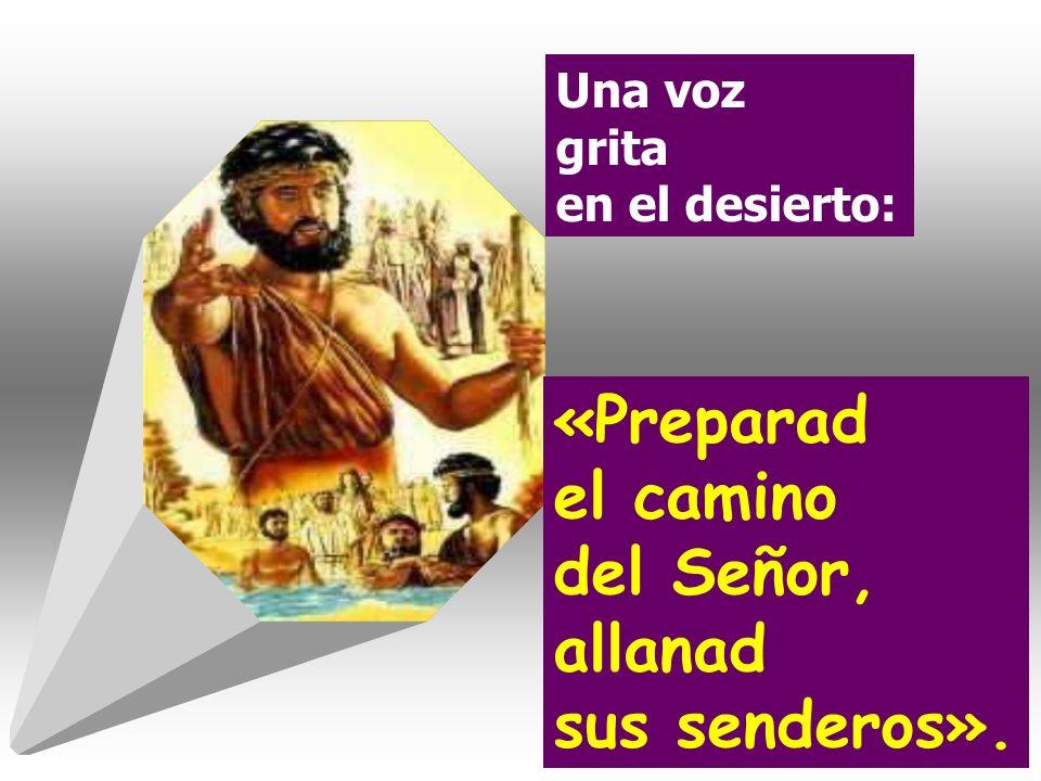 «Preparad el camino del Señor, allanad sus senderos».