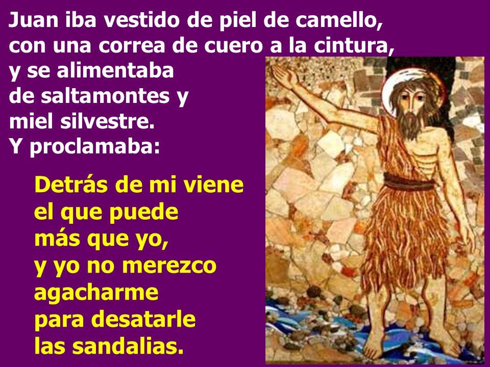 Juan iba vestido de piel de camello, con una correa de cuero a la cintura, y se alimentaba de saltamontes y miel silvestre. Y proclamaba: