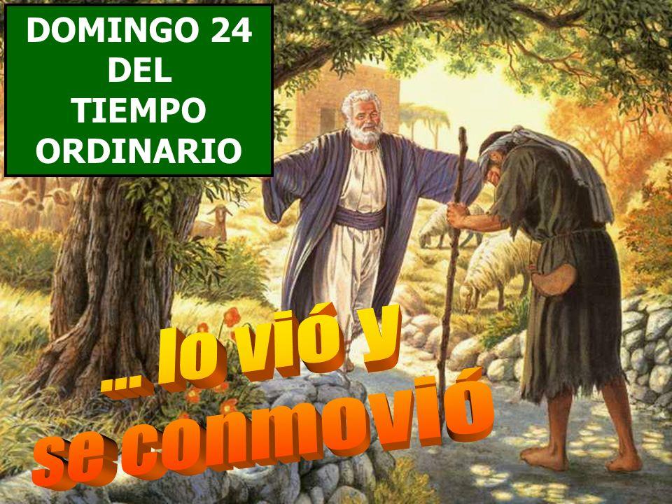 DOMINGO 24 DEL TIEMPO ORDINARIO ... lo vió y se conmovió