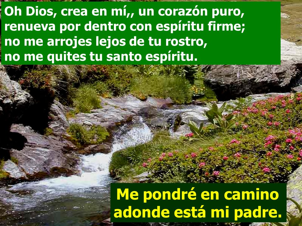 Oh Dios, crea en mí,, un corazón puro, renueva por dentro con espíritu firme; no me arrojes lejos de tu rostro, no me quites tu santo espíritu.
