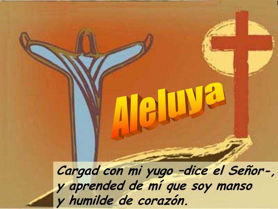 Aleluya Cargad con mi yugo –dice el Señor-, y aprended de mí que soy manso y humilde de corazón.