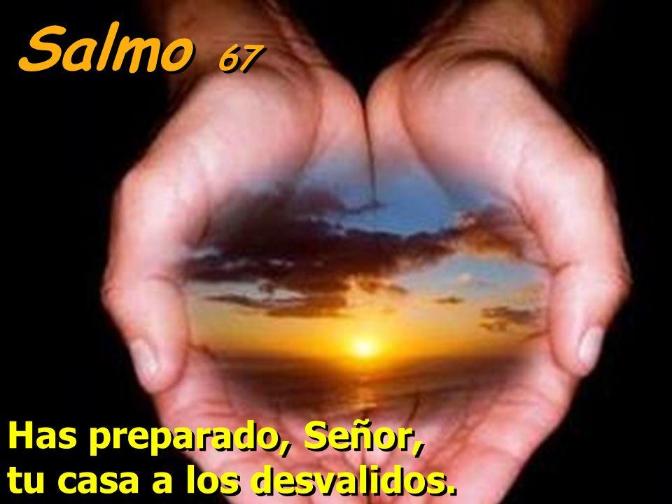 Salmo 67 Has preparado, Señor, tu casa a los desvalidos.