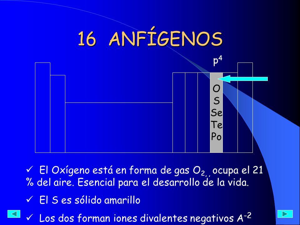 16 ANFÍGENOS p4. O. S. Se. Te. Po. El Oxígeno está en forma de gas O2, , ocupa el 21 % del aire. Esencial para el desarrollo de la vida.