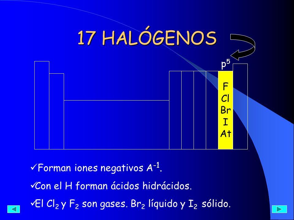 17 HALÓGENOS p5 F Cl Br I At Forman iones negativos A-1.