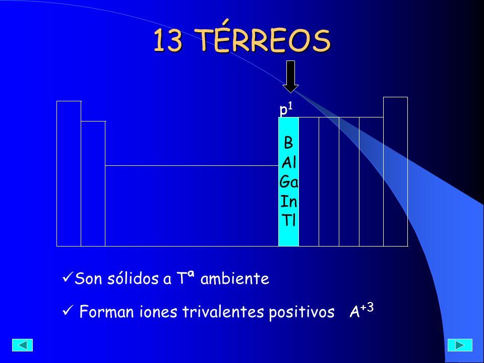 13 TÉRREOS p1 B Al Ga In Tl Son sólidos a Tª ambiente