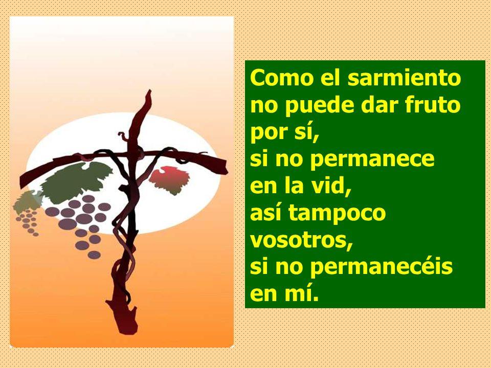 Como el sarmiento no puede dar fruto por sí, si no permanece en la vid, así tampoco vosotros, si no permanecéis en mí.