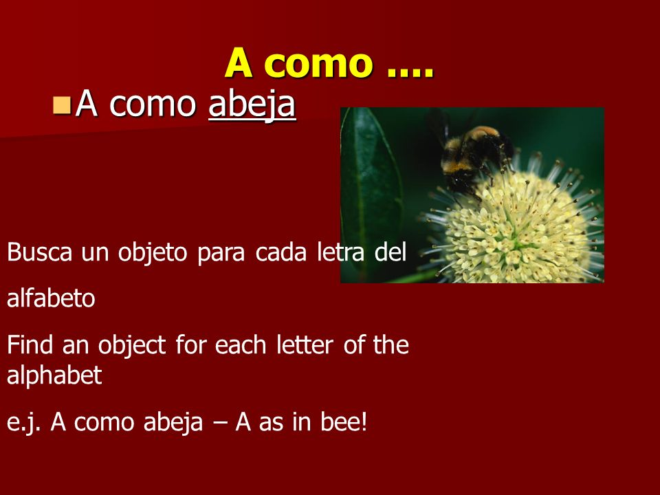 A como .... A como abeja Busca un objeto para cada letra del alfabeto