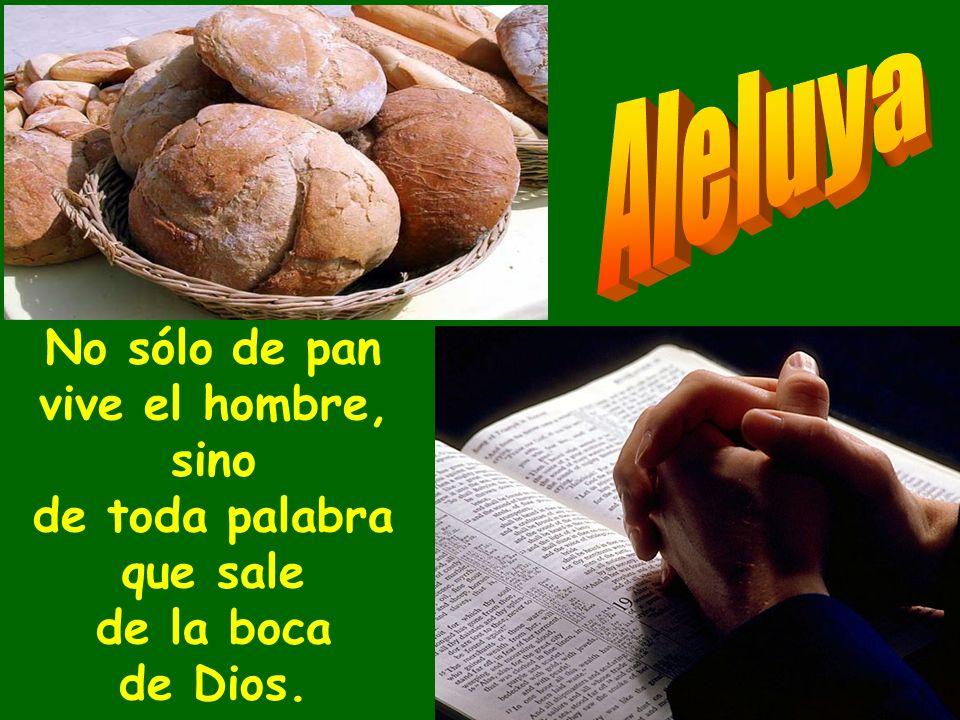 Aleluya No sólo de pan vive el hombre, sino de toda palabra que sale de la boca de Dios.
