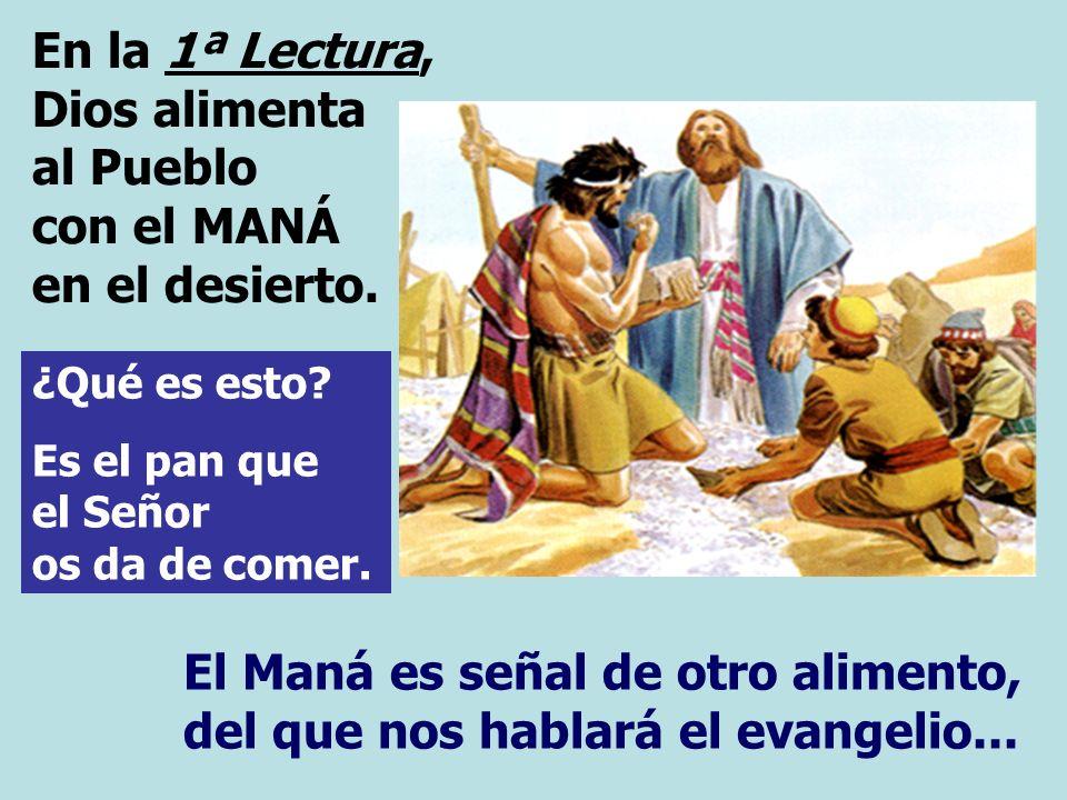 En la 1ª Lectura, Dios alimenta al Pueblo con el MANÁ en el desierto.