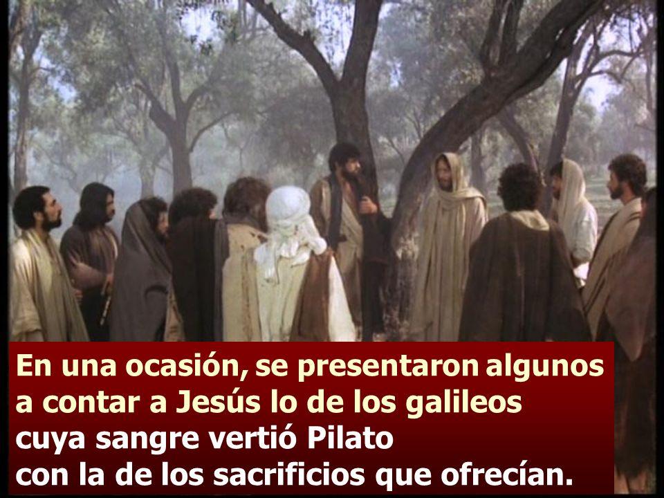 En una ocasión, se presentaron algunos a contar a Jesús lo de los galileos cuya sangre vertió Pilato con la de los sacrificios que ofrecían.