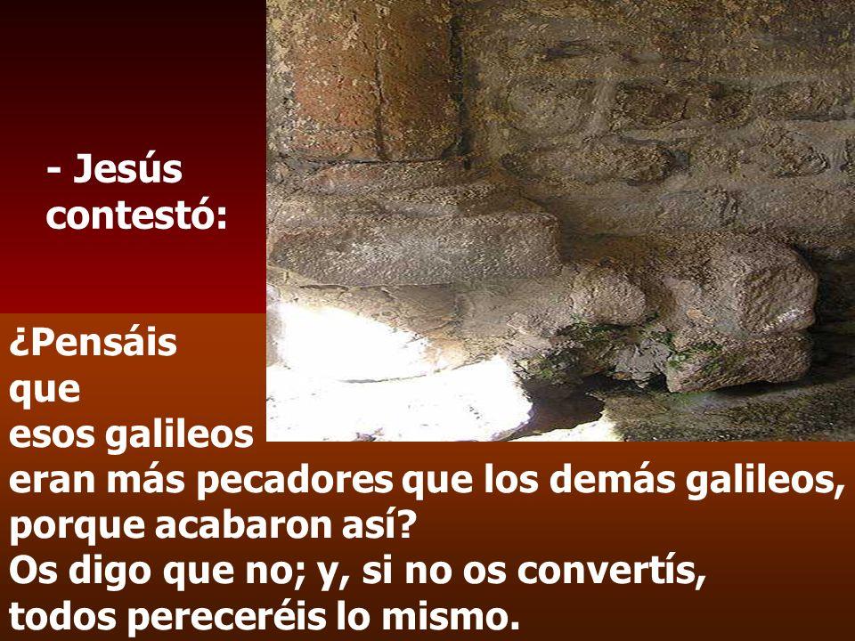- Jesús contestó: