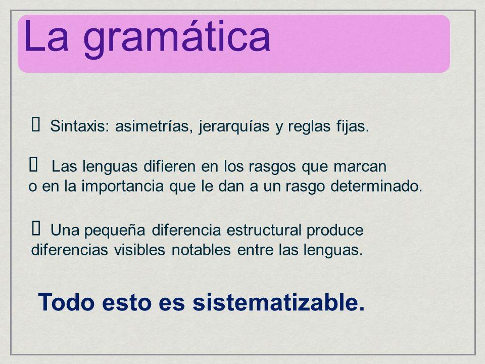 La gramática Todo esto es sistematizable.