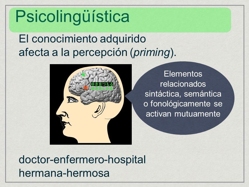 Psicolingüística El conocimiento adquirido