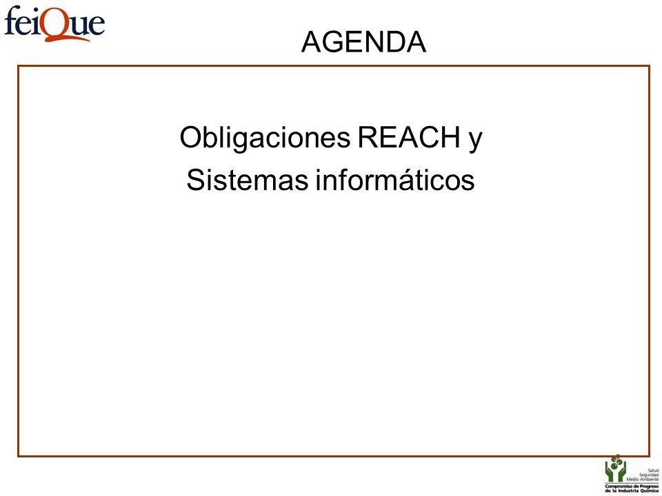 Obligaciones REACH y Sistemas informáticos