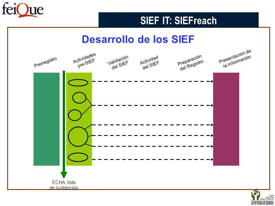 SIEF IT: SIEFreach Desarrollo de los SIEF