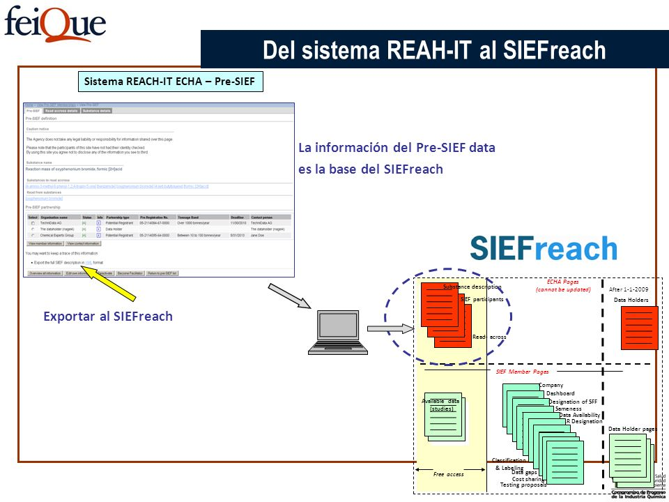 Del sistema REAH-IT al SIEFreach Sistema REACH-IT ECHA – Pre-SIEF