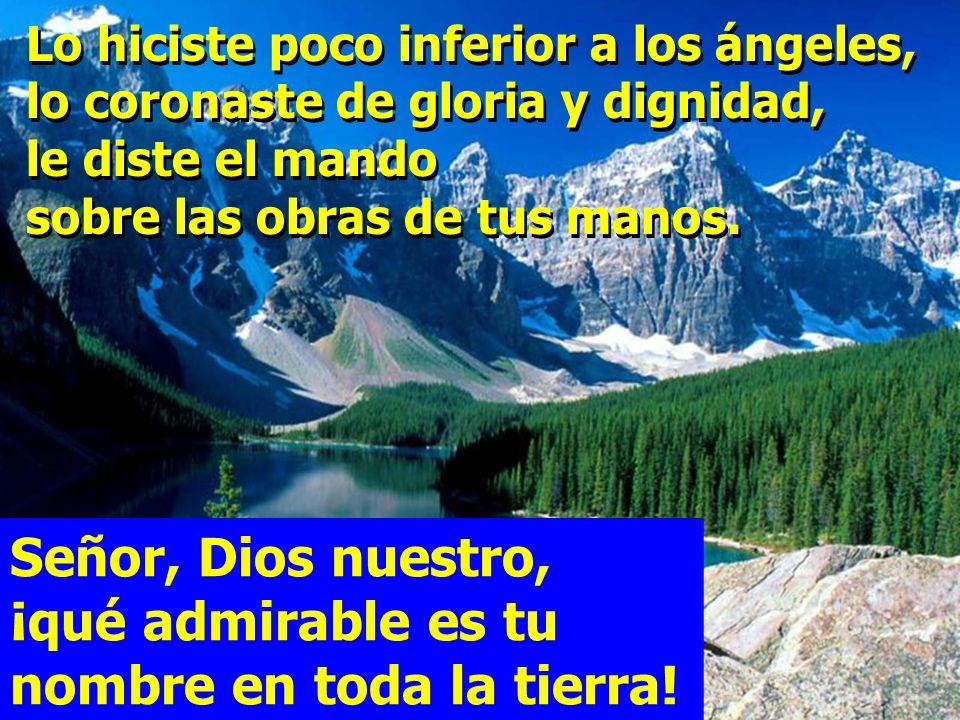 Señor, Dios nuestro, ¡qué admirable es tu nombre en toda la tierra!