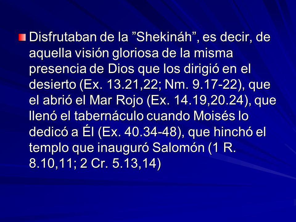 Disfrutaban de la Shekináh , es decir, de aquella visión gloriosa de la misma presencia de Dios que los dirigió en el desierto (Ex.
