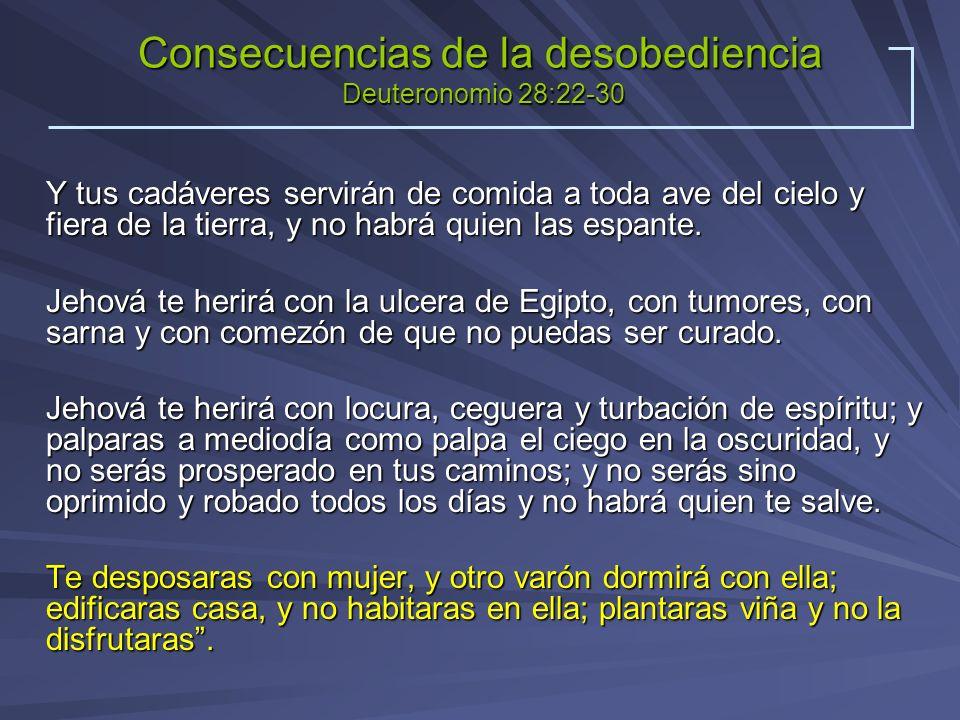 Consecuencias de la desobediencia Deuteronomio 28:22-30