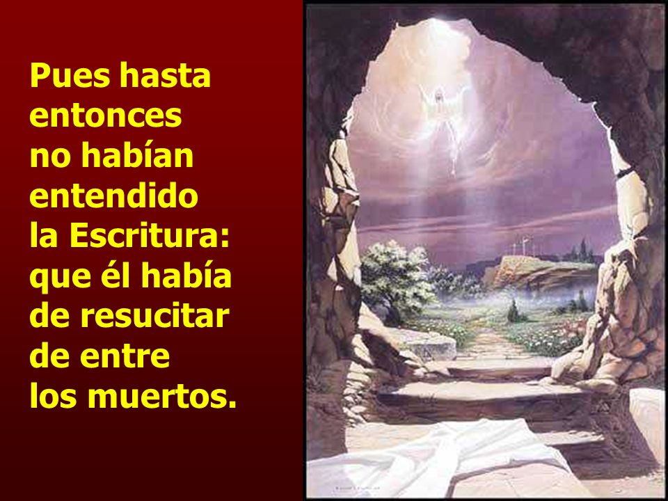Pues hasta entonces no habían entendido la Escritura: que él había de resucitar de entre los muertos.