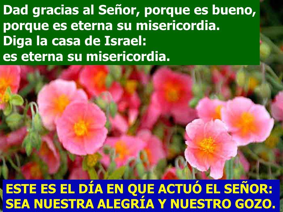 Diga la casa de Israel: es eterna su misericordia.